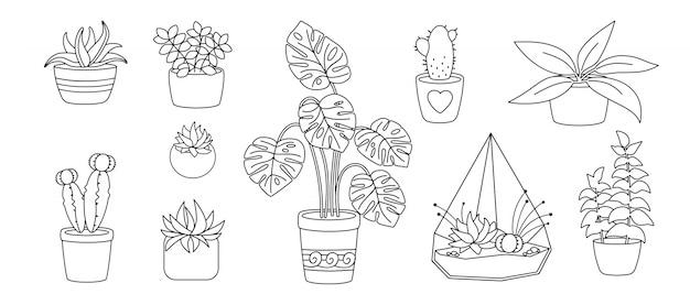 Растения и суккуленты, керамическая плоская линия. черный линейный мультфильм дом цветок. комнатные растения, кактус, горшок монстера. коллекция стильного интерьера. изолированная иллюстрация