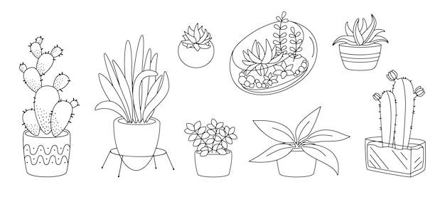 Растения и суккуленты, керамическая плоская линия. черный линейный мультфильм дом крытый цветок. комнатные растения, кактус, горшок монстера. модная коллекция домашнего декора. изолированная иллюстрация