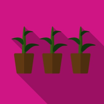 植物フラットアイコンイラスト孤立ベクトル記号記号