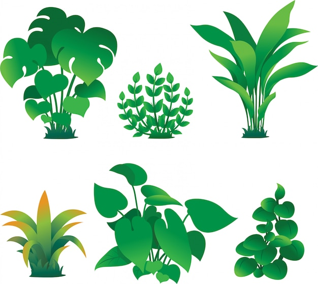 Plant garden illustration set