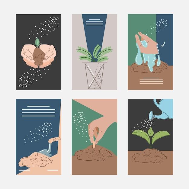 Плантации по выращиванию растений