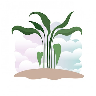 Plant in landscape isolated