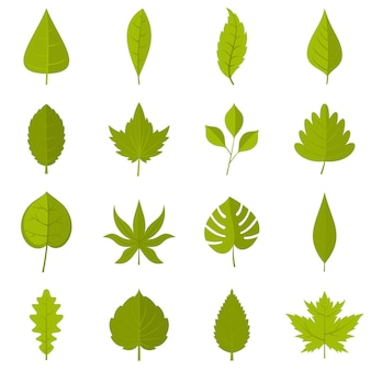 Plant leafs icons set in flat style