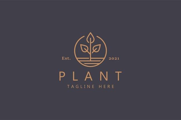 植物のロゴ。ネイチャーサインブランドアイデンティティ農業。シンプルなバッジラインスタイル。