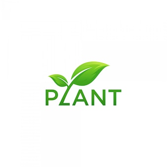Plant organic typo logo