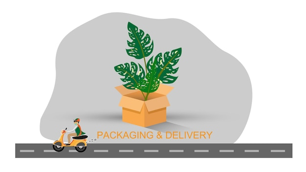 Plant packaging and delivery concept Premium Vector