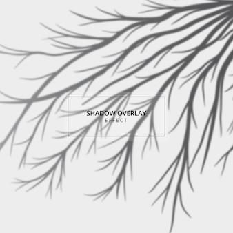灰色の背景に植物の影のオーバーレイ効果