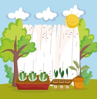Посадка и выращивание овощей