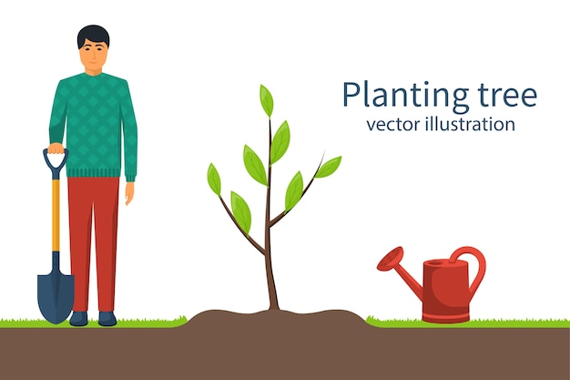 Planting tree. gardener with shovel in hand. process planting concept. gardening, agriculture, caring for environment.  illustration flat design. young sapling.