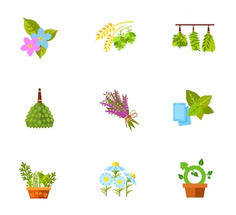 Plants and flowers icon set