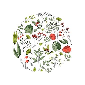 식물과 허브 배경입니다. 디자인 또는 초대 카드 요소