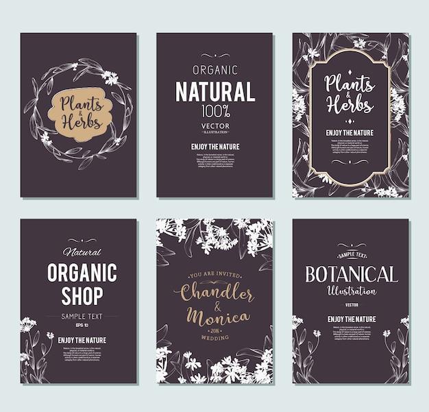 植物とハーブのバナーセット。デザインや招待状の要素の要素