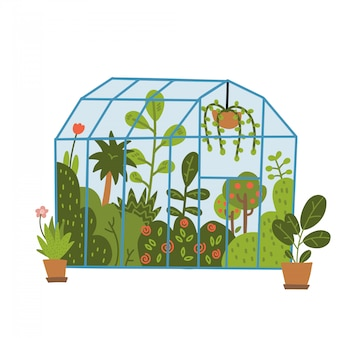 Plants growing in pots or planters inside glass greenhouse. glasshouse or botanical garden. concept of home gardening. modern flat   hand drawn illustration.