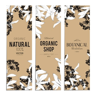 Plants and herbs banners set. element for design or invitation card