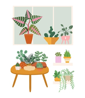 Plants at home. garden flower pots, greens stand on table, window and shelf. isolated doodle botanical elements vector illustration. green gardening, flower floral and houseplant