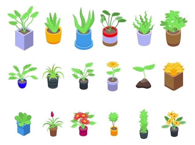 식물 아이콘을 설정합니다. 흰색 배경에 고립 된 웹 디자인을 위한 식물 벡터 아이콘의 아이소메트릭 세트