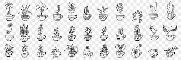 냄비에 식물 낙서 세트. 손의 컬렉션은 투명 배경에 고립 된 홈 인테리어 장식 냄비에 다양 한 국내 바지와 꽃을 그려