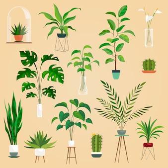 Растения в горшках установлены