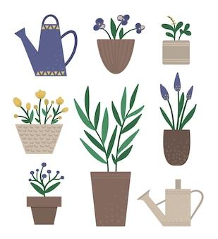 흰색 절연 물을 캔 냄비에 식물