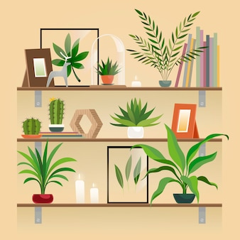 Plants on shelf. houseplants in pot on shelves. indoor garden potted planting, home decoration elements vector.