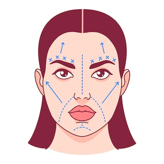 Plastic surgery, cut lines on a female face. vector illustration.