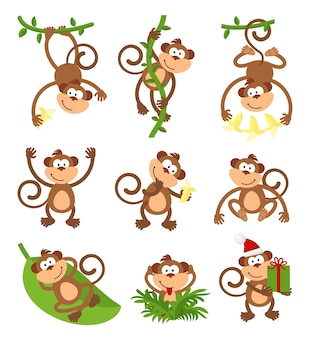Playful monkeys character  set.