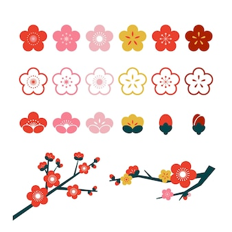 Plum blossom flower collection illustration