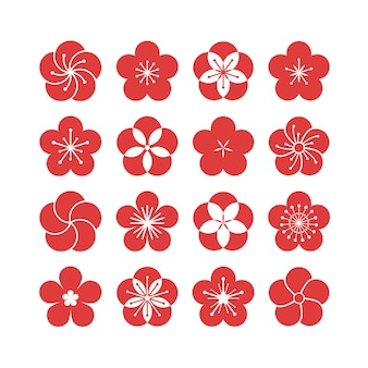 Plum blossom flower collection