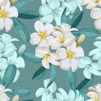Plumeria seamless pattern vector illustration