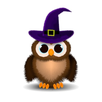 Plush owl in hat isolated, owl for halloween