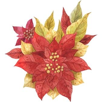 Poinsettia christmas bouquet