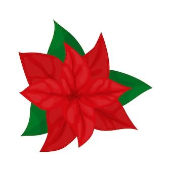 포인세티아 꽃 크리스마스 식물 벡터 일러스트 레이 션. 메리 크리스마스 홀리 화환. 휴일 기호입니다. 아름다운 포인세티아 꽃, 어떤 목적에도 훌륭한 디자인. 꽃 테두리입니다. 휴일 화환.