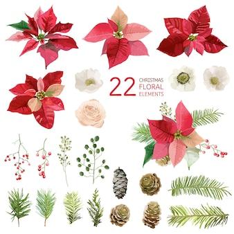 Цветы пуансеттии и рождественские цветочные элементы