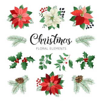 Poinsettia flowers and christmas floral elements