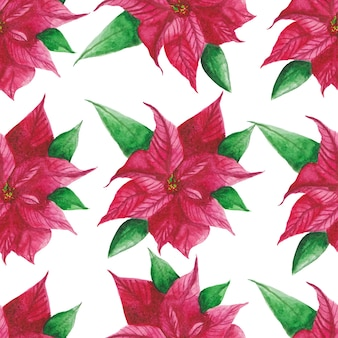 Poinsettia watercolor pattern background