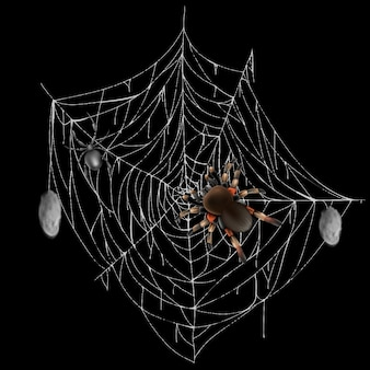 Poisonous spiders on web lace with hunted and wrapped preys 3d realistic vector isolated on black ba