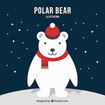 Carattere orso polare