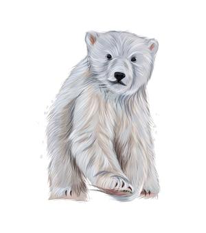 色とりどりの絵の具からホッキョクグマ水彩画のスプラッシュリアルな描画