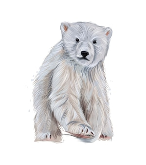 Polar bear from multicolored paints splash of watercolor colored drawing realistic