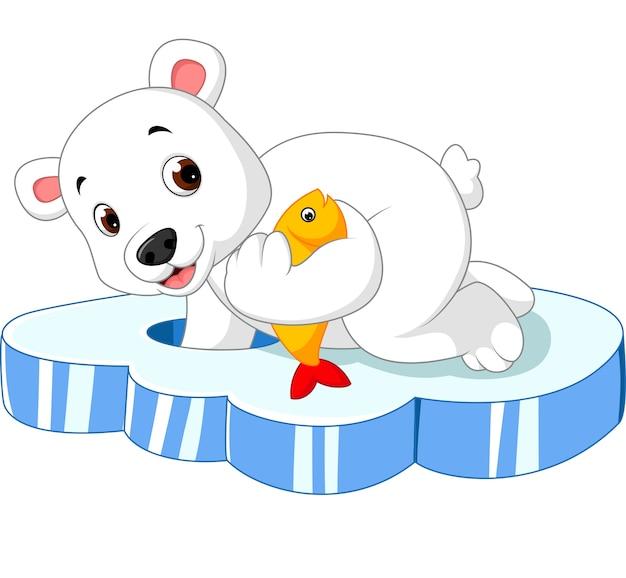 Polar bear is fishing