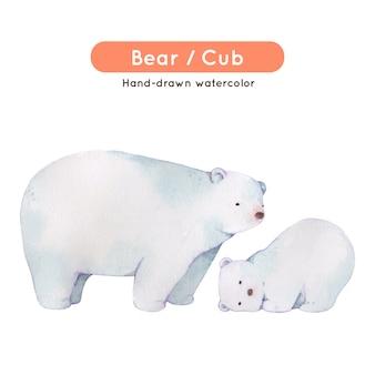 Polar bear watercolor illustration