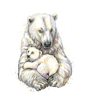 Polar bear with cub from a splash of watercolor, hand drawn sketch.  illustration of paints