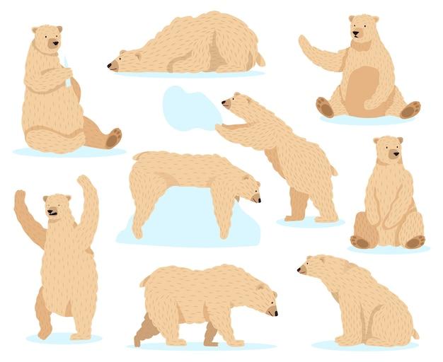 シロクマ。北極の雪のクマ、かわいい北クマのキャラクター、怒っている毛皮の野生動物哺乳類キャラクターイラストアイコンセット。雪の中で北極クマ、冬の北極哺乳類の毛皮