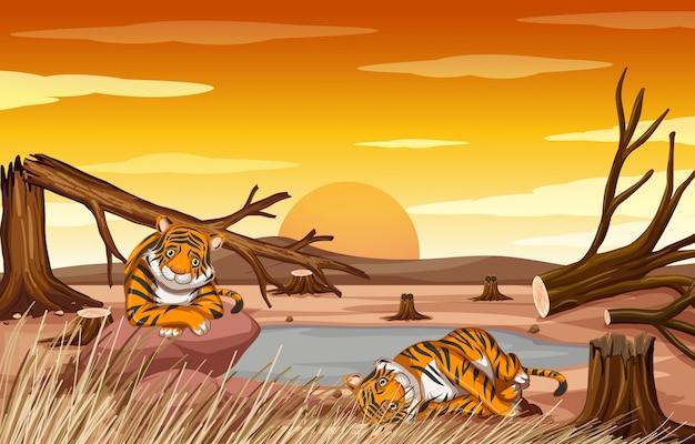 Scena di controllo dell'inquinamento con tigri e deforestazione