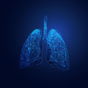 ポリゴン肺