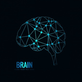 Polygonal brain design Free Vector