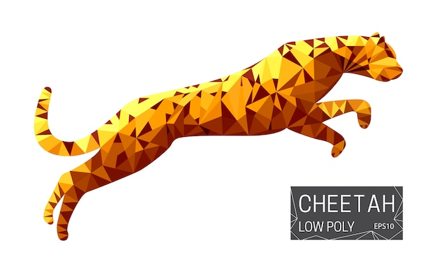 Polygonal cheetah illustration
