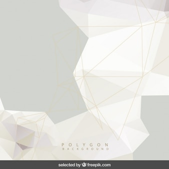 Polygonal grey background with mesh