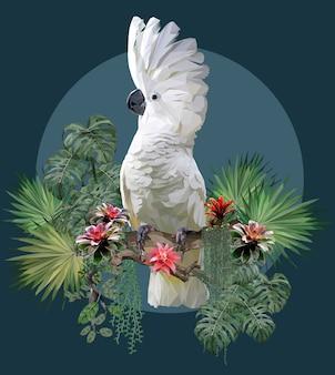 Polygonal illustration of umbrella cockatoo and amazon plants.