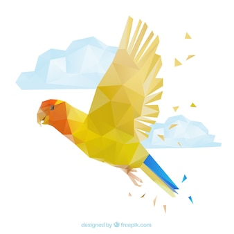 다각형 앵무새